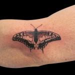 03-04-2014 Tattoo Farfalla 1 di 3