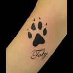 03-09-2015 Tattoo Zampa