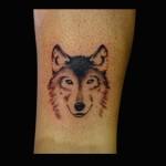 14-05-2016 Tattoo Lupo