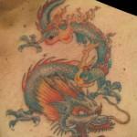 19-10-2013 Drago ripreso II