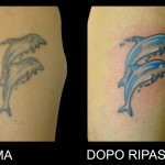 23-06-2014 Tattoo Ripasso Delfini