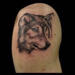 25-02-2016 Tattoo Lupo