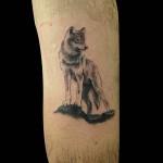 26-06-2017 Tattoo Lupo