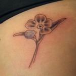 27-09-2013 Fiore con petalo